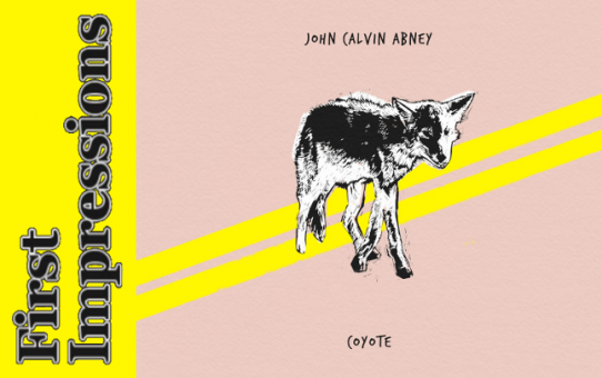 First Impressions: Coyote by John Calvin Abney